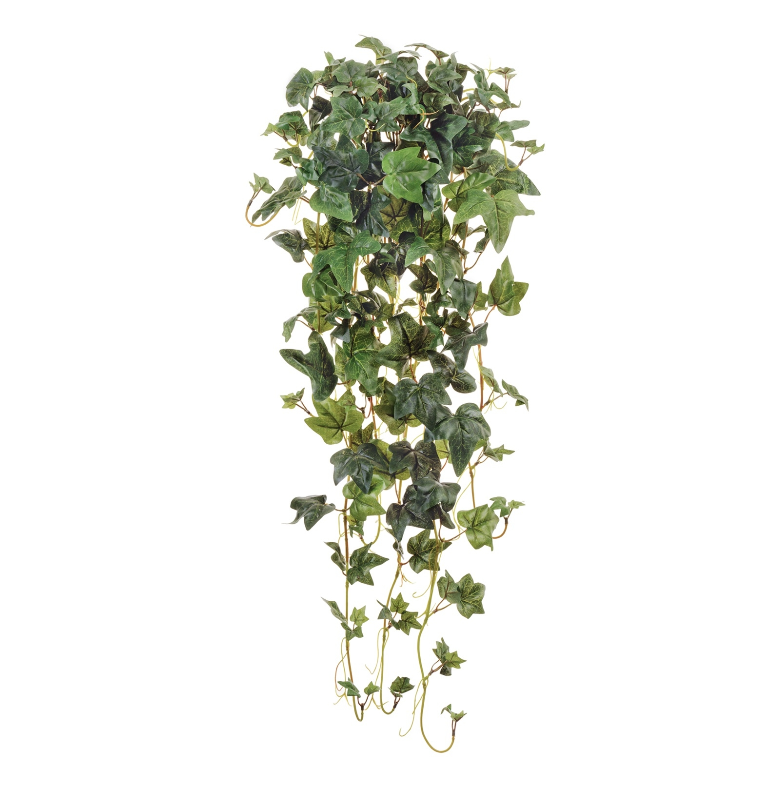 Растения для гравийного сада фото сделаем ваш